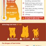 DTB_section_04_infographic_heat_stroke